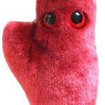 Herzzelle kuschlig