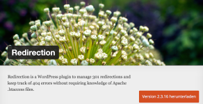 Wordpress Plugin Redirection