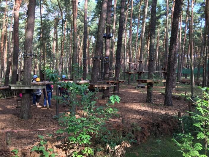 Kletterstrecken im Wald. Bis auf 9 Meter ging es hoch.