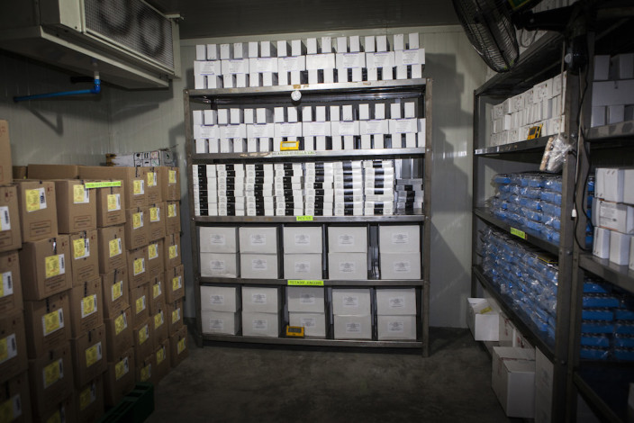 Kühlraum voll mit Impfstoffen