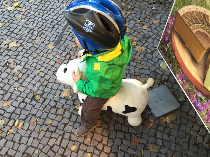Richtige Männer können Kühe reiten.