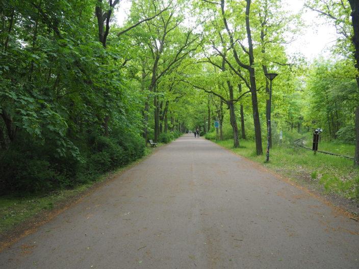 In der Wuhlheide gibt es viel Natur. Ideal zum spazieren oder Radfahren.